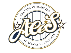 Logo for ACES Summer Volunteer – Minneapolis – Jerry Gamble