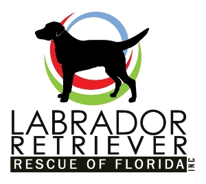 Labrador Retriever Rescue of Florida, Inc.