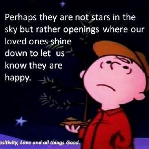 Charlie Brown looks at Stars....