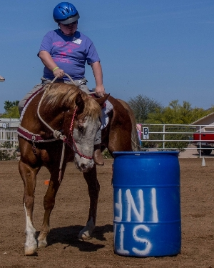 2014 Charity Horse Show