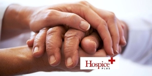 Hands Hospice Plus 2