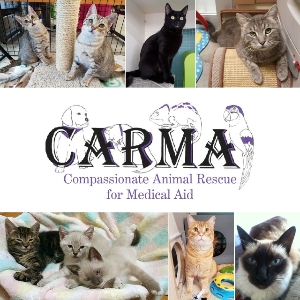 Volunteer for CARMA