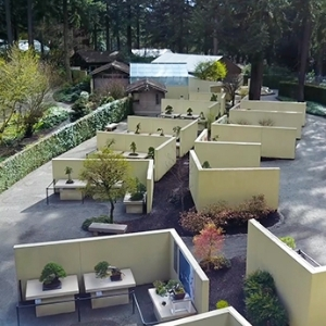 Aerial View of Pacific Bonsai Museum