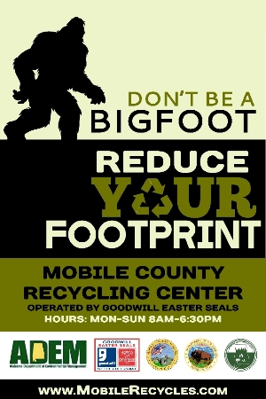 Don't be A BIGFOOT