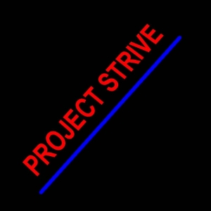 Project Strive
