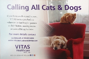 Calling All Dogs and Cats