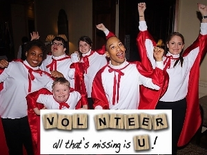 Ambassador's Ball Volunteer Call