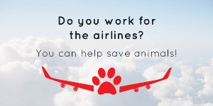 Do you work for the airlines