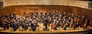Arapahoe Philharmonic - the orchestra