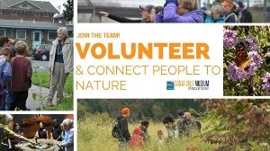 Volunteer at the SC Museum of Natural History