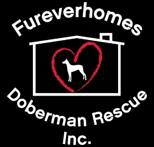 Fureverhomes Doberman Rescue, Inc.