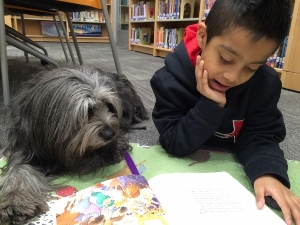 Reading Education Assistance Dogs program