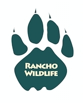 Rancho Wildlife Foundation