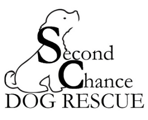 Every Dog Deserves a Second Chance!
