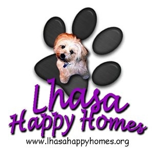 Lhasa Happy Homes Rescue!