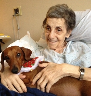 Pet Therapy at Holisticare Hospice